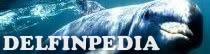 Delfinpedia
