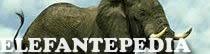 Elefantepedia