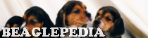 Beaglepedia