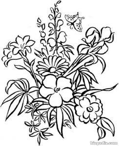 Flores Para Colorear Biopedia