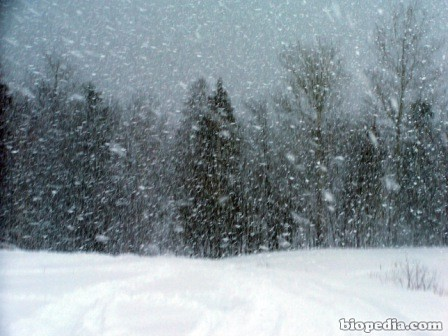 tormenta-nieve