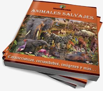 libro-bio1