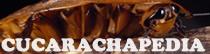 Cucarachapedia