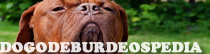 Dogodeburdeospedia